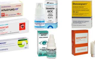 Блеомицетин — инструкция по применению, цена, отзывы и аналоги