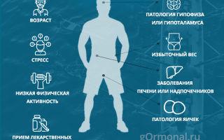 Препараты мужских гормонов: чем опасны, вред от половых, повышающих, мужских половых желез, для мужчин