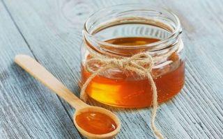 Мед при панкреатите: можно или нет?