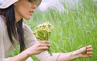Корень лапчатки белой: применение для лечения щитовидной железы (рецепты, противопоказания, отзывы)