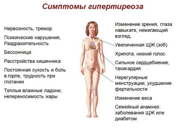 Гиперфункция щитовидной железы: причины, симптомы, диагностика, лечение(народное, диета), осложнения