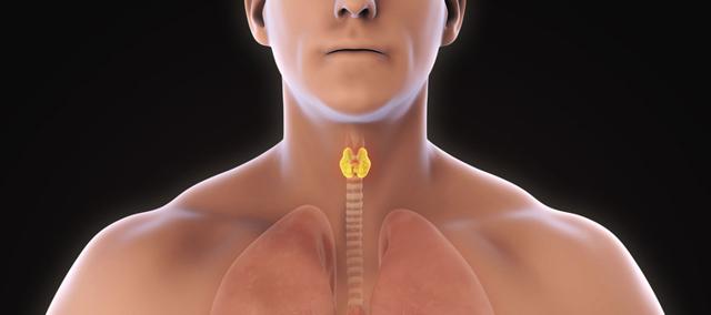Развитие карциномы щитовидной железы и методы ее устранения