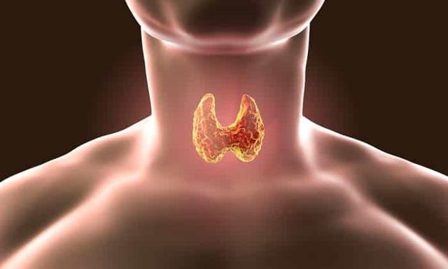Т4 общий: норма, понижен, повышен, симптомы причины и лечение отклонения