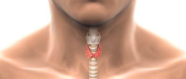 Манифестный гипотиреоз: что это такое, симптомы (у мужчин, женщин), лечение, виды, диагностика
