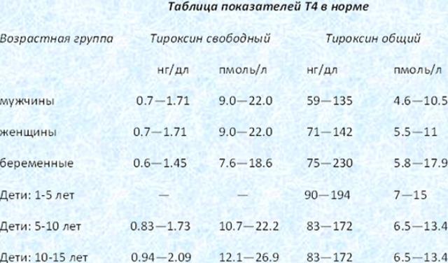 Тироксин (Т4) свободный понижен: что значит, причины, лечение (у женщин, мужчин, детей)