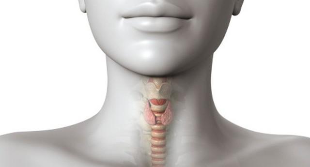 Первичный гипотиреоз: причины, лечение, симптомы, виды (субклинический, манифестный), диагностика, профилактика