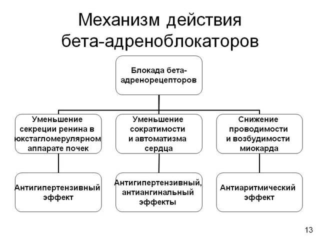 ЛОКРЕН - инструкция по применению, цена, отзывы и аналоги