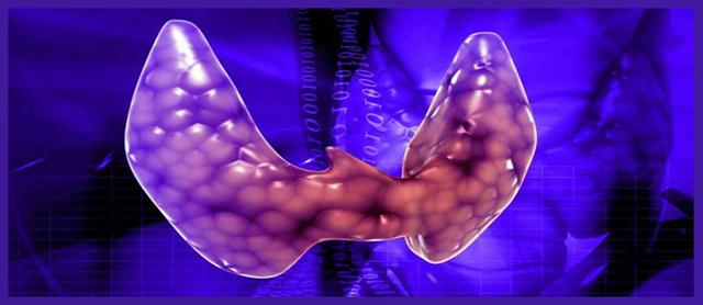 Фолликулярная опухоль щитовидной железы: симптомы, лечение и диагностика заболевания