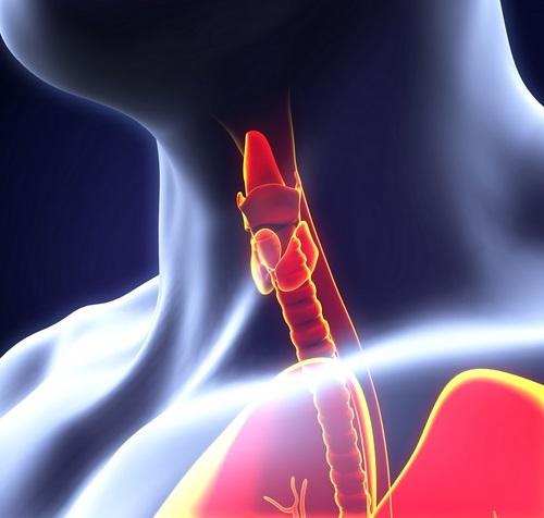 ТТГ при гипотиреозе: повышенный, пониженный, норма анализа