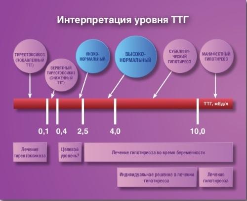 ТТГ повышен: что это значит у женщин, причины, последствия, что делать