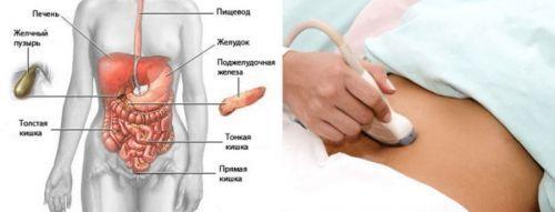 УЗИ поджелудочной железы ребенку: подготовка к исследованию, норма и отклонения