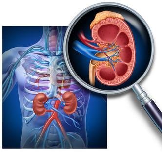 Несахарный диабет: диагностика, анализы крови, мочи, ее плотность, удельный вес, биохимия, какие еще дифференциальные сдать