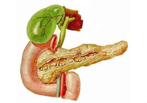 Интоксикация и панкреатит поджелудочной железы