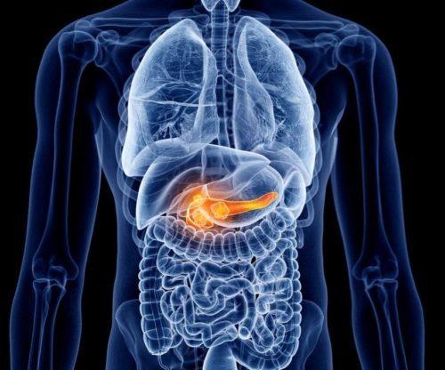 Панкреатит: симптомы и лечение у взрослых