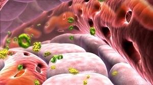 Анализ мочи при диабете: общий, на микроальбуминурию, показатели у ребенка, при сахарном диабете 2 типа.