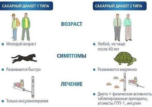 Нарушения поджелудочной железы (лечение, питание)