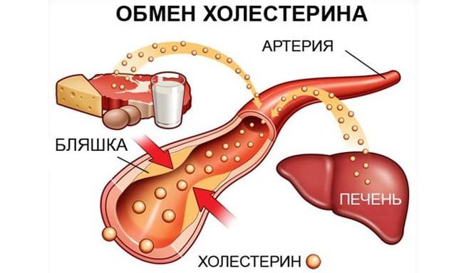 Кабачки при панкреатите - а можно ли? И по каким рецептам