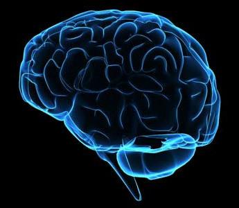 Недостаточность гипофиза: тотальная, первичный гипопитуитаризм, послеродовый, парциальный, причины синдрома у детей, диагностика и гормоны, лечение функции