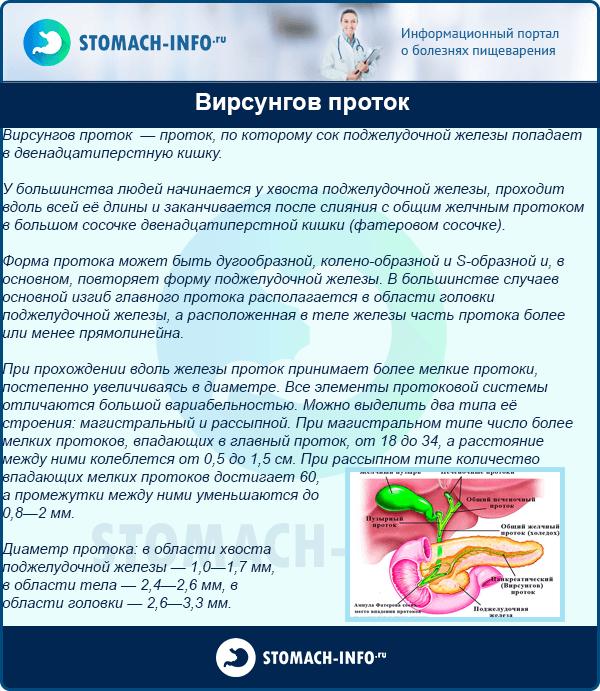 Протоки поджелудочной железы (вирсунгов и санториниев)
