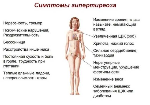 Гиперпаратиреоз: питание при алиментарном, диета, рацион у женщин