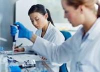 Антитела к бета клеткам поджелудочной железы