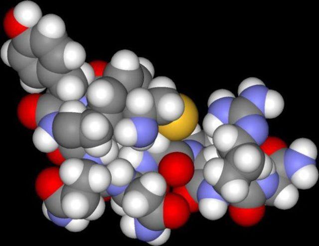 Вазопрессин гормон: основные функции, действие, анализы на выявление гормона гипофиза, антидиуретический гормон АДГ