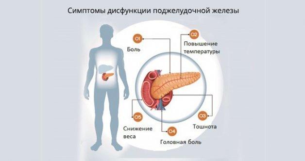 Дисфункция поджелудочной железы - лечение, симптомы, причины