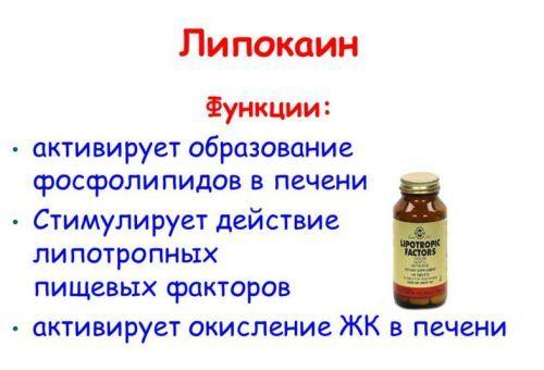 Глюкагон гормон: основные функции гормона поджелудочной железы; как взаимосвязан с инсулином