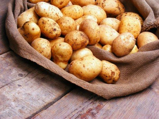 Картошка при диабете: польза и вред, как правильно сварить, можно ли есть, если жареная, печеная, вареная, вымоченная, вареники с картошкой и сок, при 2 типе