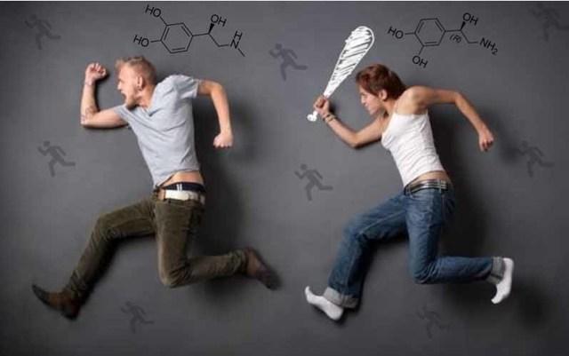 Норадреналин гормон: основные функции, гормон надпочечников - это стресса, ярости, почему повышен