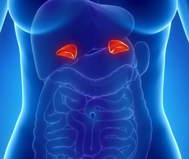 Феохромоцитома и операция: подготовка, реабилитация и диета после, прогноз жизни, алкоголь, феохромоцитома надпочечника после операции