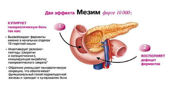 Мезим при панкреатите (как принимать)
