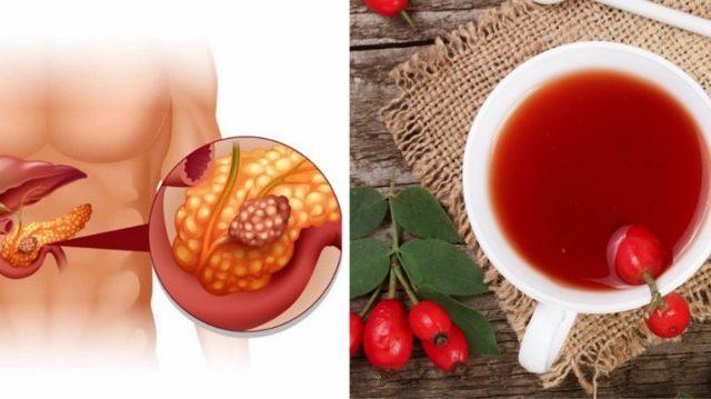 Отвар шиповника при панкреатите: польза и противопоказания