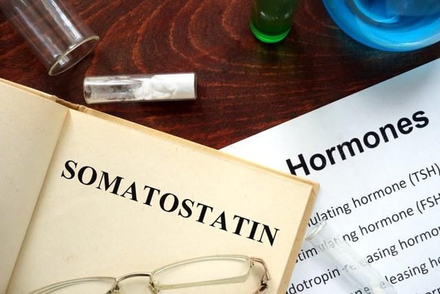 Какие горомоны вырабатывает поджелудочная железа?