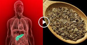 cемена укропа для поджелудочной железы (при панкреатите)