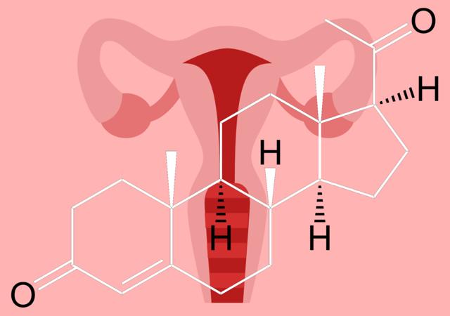 Как повысить прогестерон доступными способами: травами, при беременности, продуктами, препаратами для подростка, при климаксе