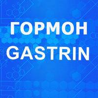 Гастрин гормон: основная роль, что показывает анализ, если повышен, понижен, причины изменения в желудке, секреция