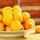 Что приготовить при панкреатите поджелудочной (рецепты)