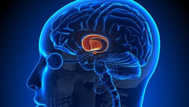 Гипоталамичекий синдром: основные причины развития у взрослых и детей, послеродовый, активная стадия и симптомы, армия и инвалидность