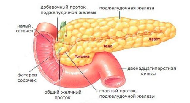 Аберрантная поджелудочная железа - лечение, причины